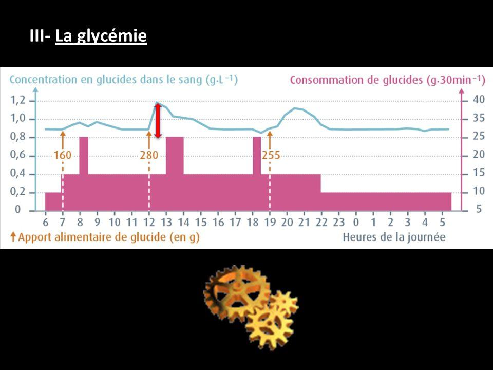 III- La glycémie