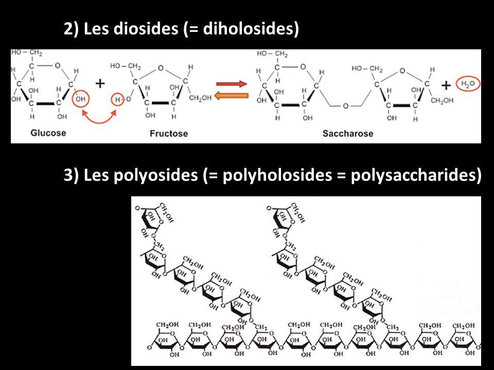 + Glucose Glycémie < 1 g/L Activation 2) Hypoglycémie Cellule α