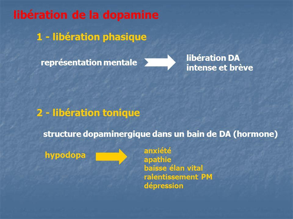 libération de la dopamine 1 - libération phasique libération DA intense et brève représentation mentale 2 - libération tonique structure dopaminergiqu