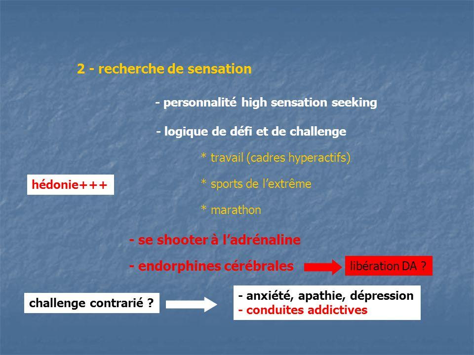 2 - recherche de sensation - personnalité high sensation seeking - logique de défi et de challenge * travail (cadres hyperactifs) * sports de lextrême