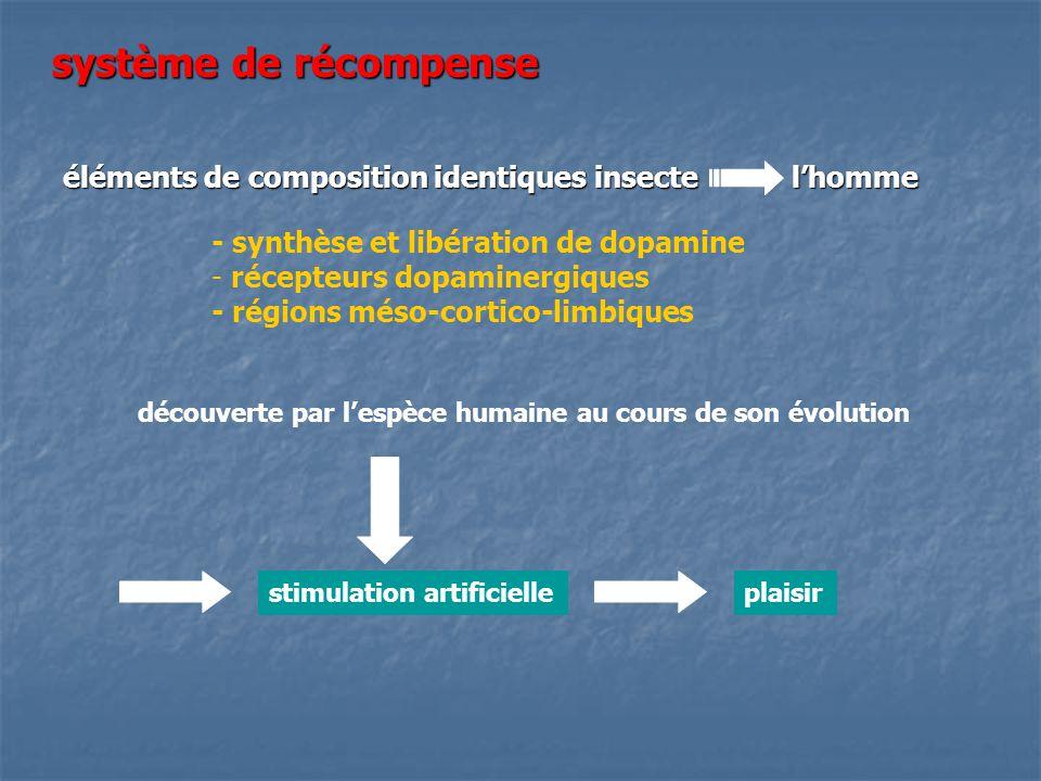 système de récompense éléments de composition identiques insecte lhomme - synthèse et libération de dopamine - récepteurs dopaminergiques - régions mé