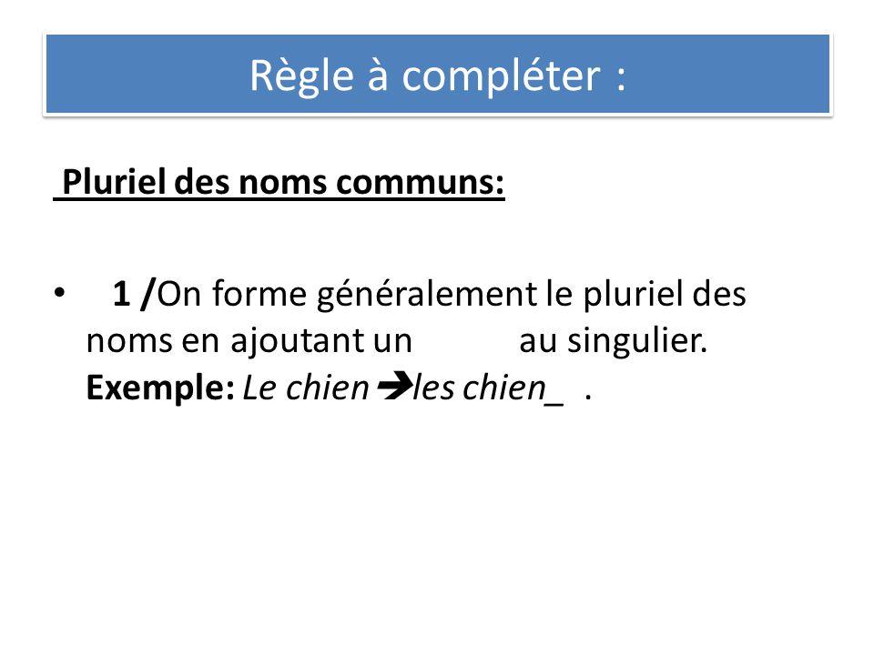 Règle à compléter : Pluriel des noms communs: 1 /On forme généralement le pluriel des noms en ajoutant un au singulier. Exemple: Le chien les chien_.