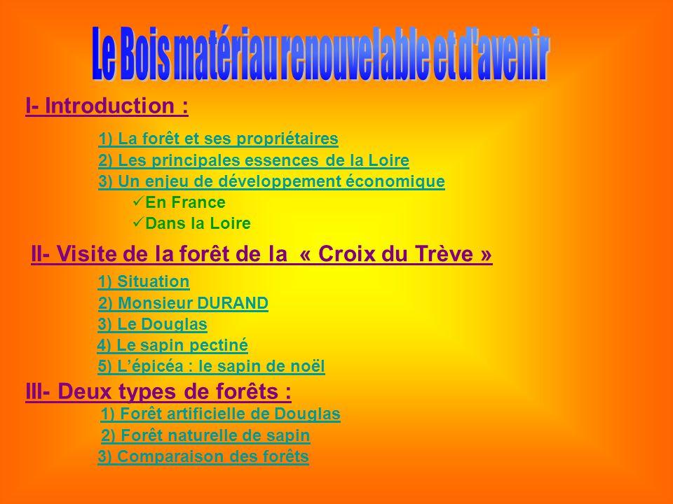 I- Introduction : 1) La forêt et ses propriétaires 2) Les principales essences de la Loire 3) Un enjeu de développement économique En France Dans la L