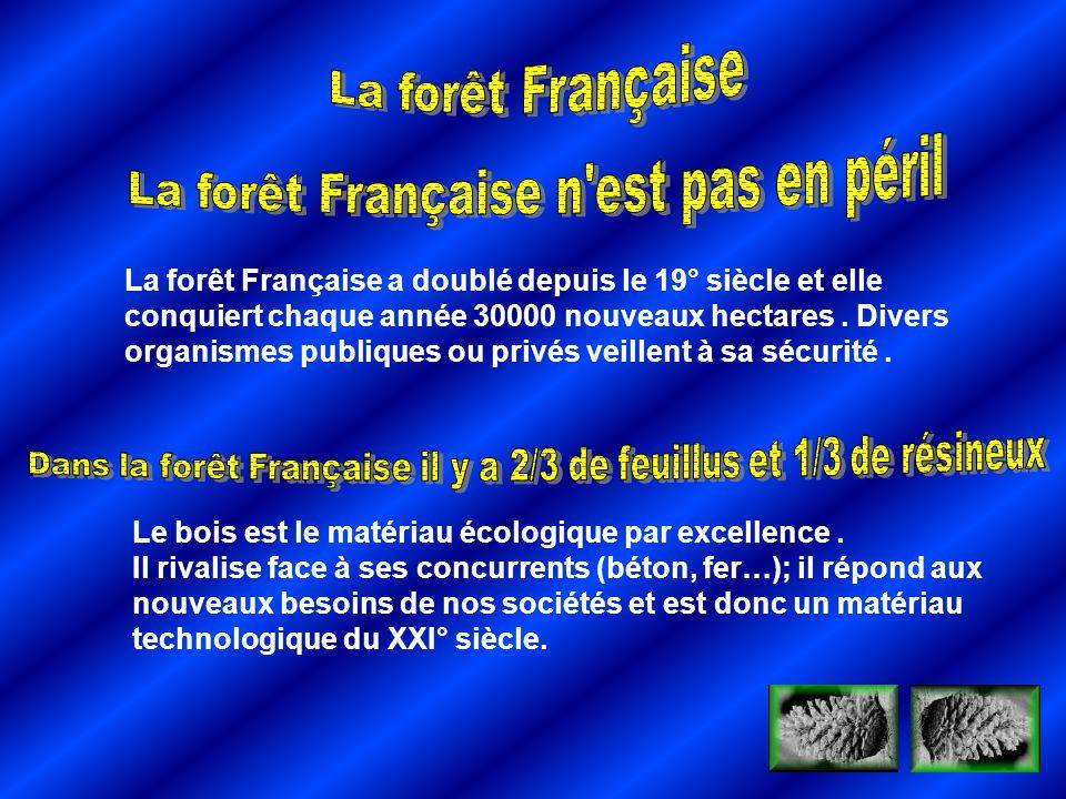 La forêt Française a doublé depuis le 19° siècle et elle conquiert chaque année 30000 nouveaux hectares. Divers organismes publiques ou privés veillen