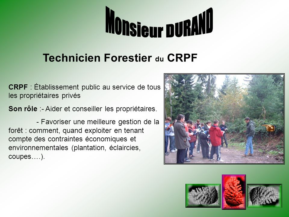 CRPF : Établissement public au service de tous les propriétaires privés Son rôle :- Aider et conseiller les propriétaires. - Favoriser une meilleure g
