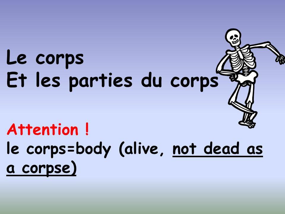 Le corps Et les parties du corps Attention ! le corps=body (alive, not dead as a corpse)