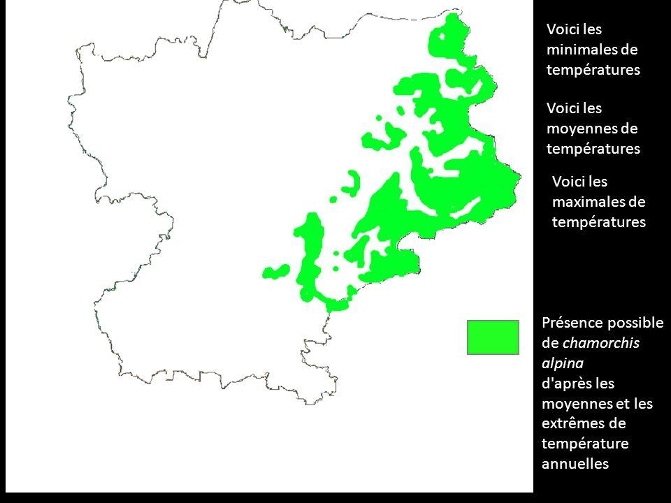Voici les minimales de températures Voici les moyennes de températures Voici les maximales de températures Présence possible de chamorchis alpina d'ap