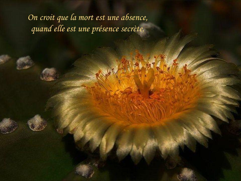On croit que la mort est une absence, quand elle est une présence secrète.