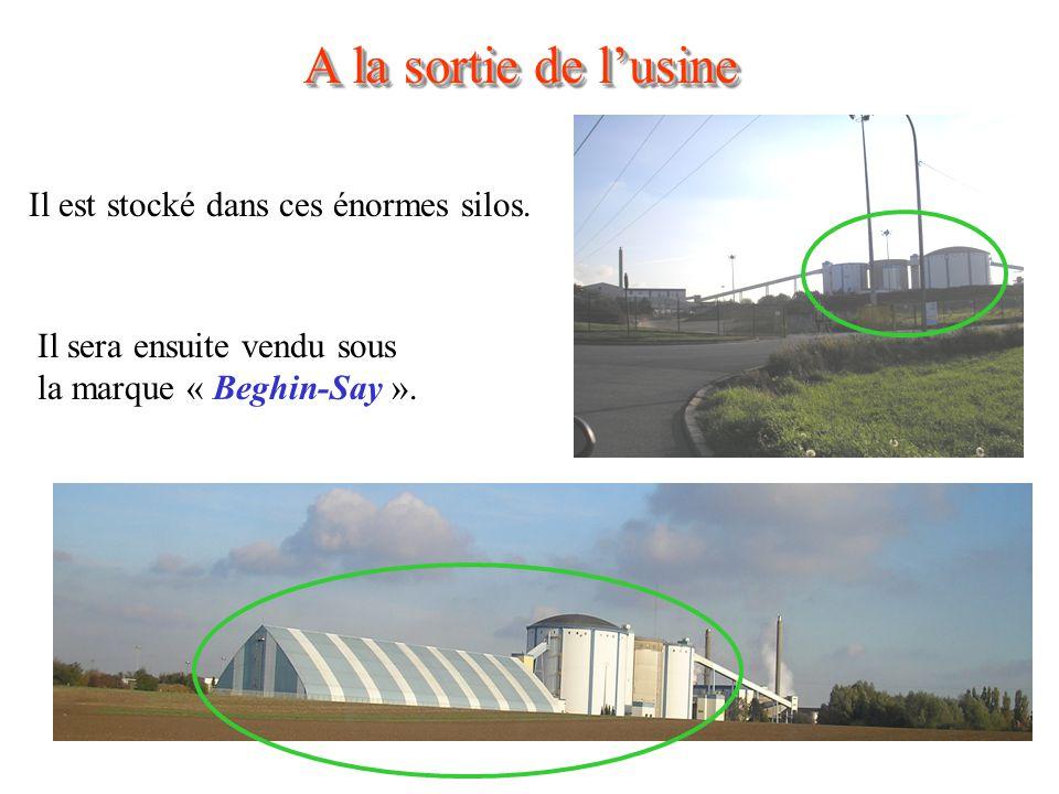 A la sortie de lusine Il est stocké dans ces énormes silos.