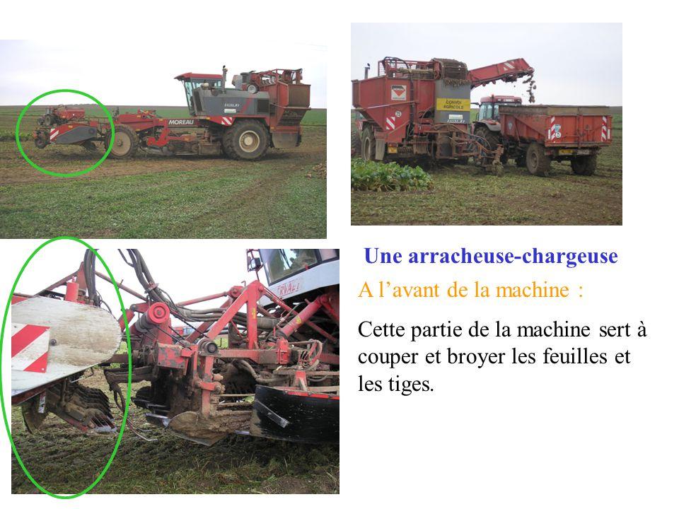 Une arracheuse-chargeuse A lavant de la machine : Cette partie de la machine sert à couper et broyer les feuilles et les tiges.
