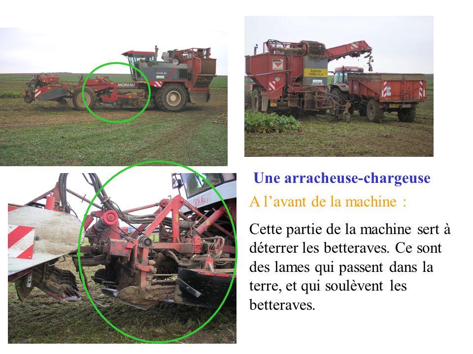 Une arracheuse-chargeuse A lavant de la machine : Cette partie de la machine sert à déterrer les betteraves.