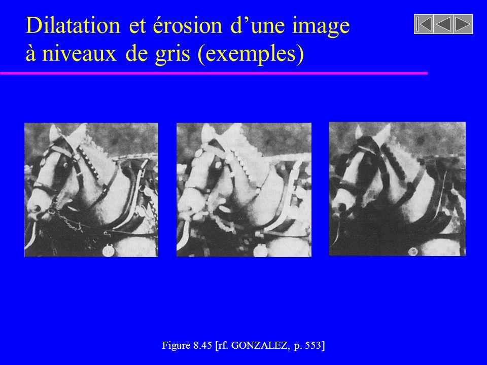 Figure 8.44 [rf. GONZALEZ, p. 551] Érosion