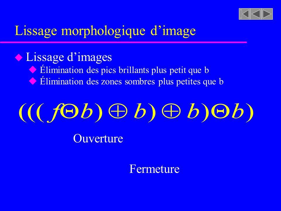 Figure 8.47 [rf. GONZALEZ, p. 556] Ouverture et fermeture dune image à niveaux de gris (exemples)