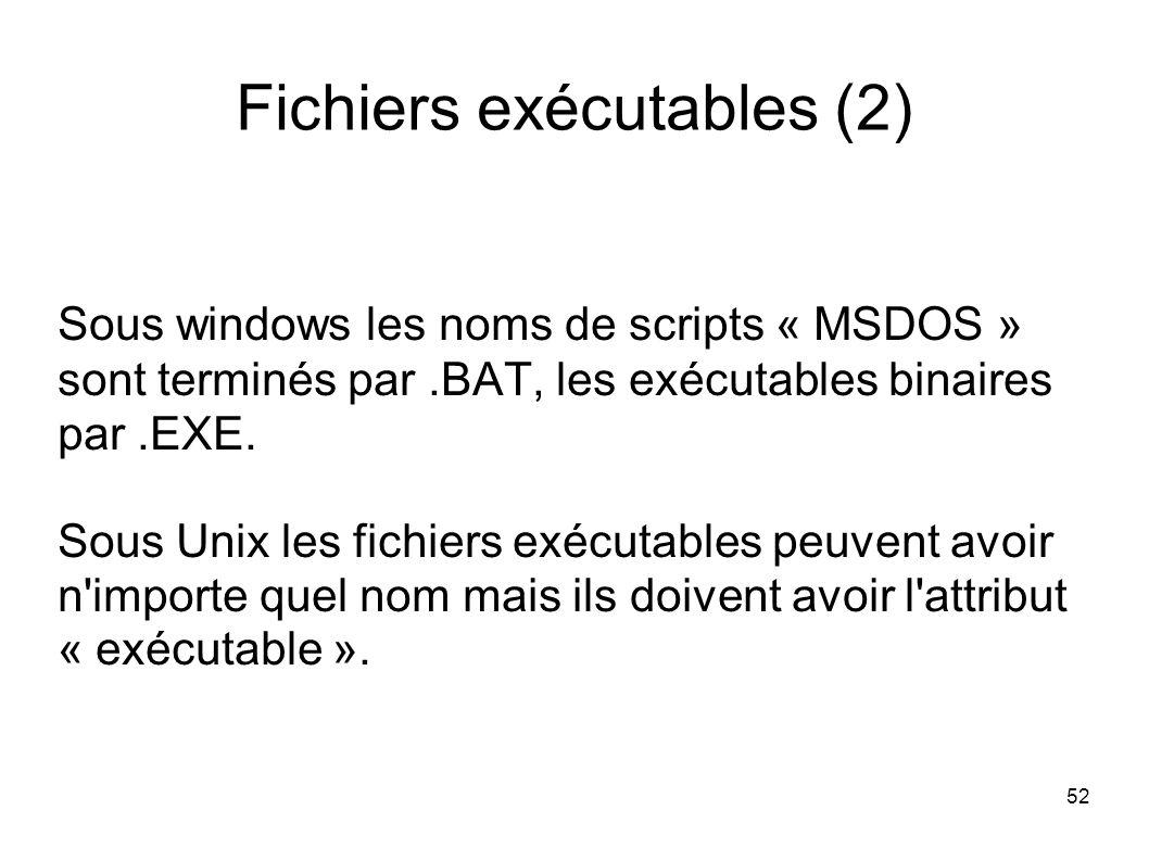 52 Fichiers exécutables (2) Sous windows les noms de scripts « MSDOS » sont terminés par.BAT, les exécutables binaires par.EXE.