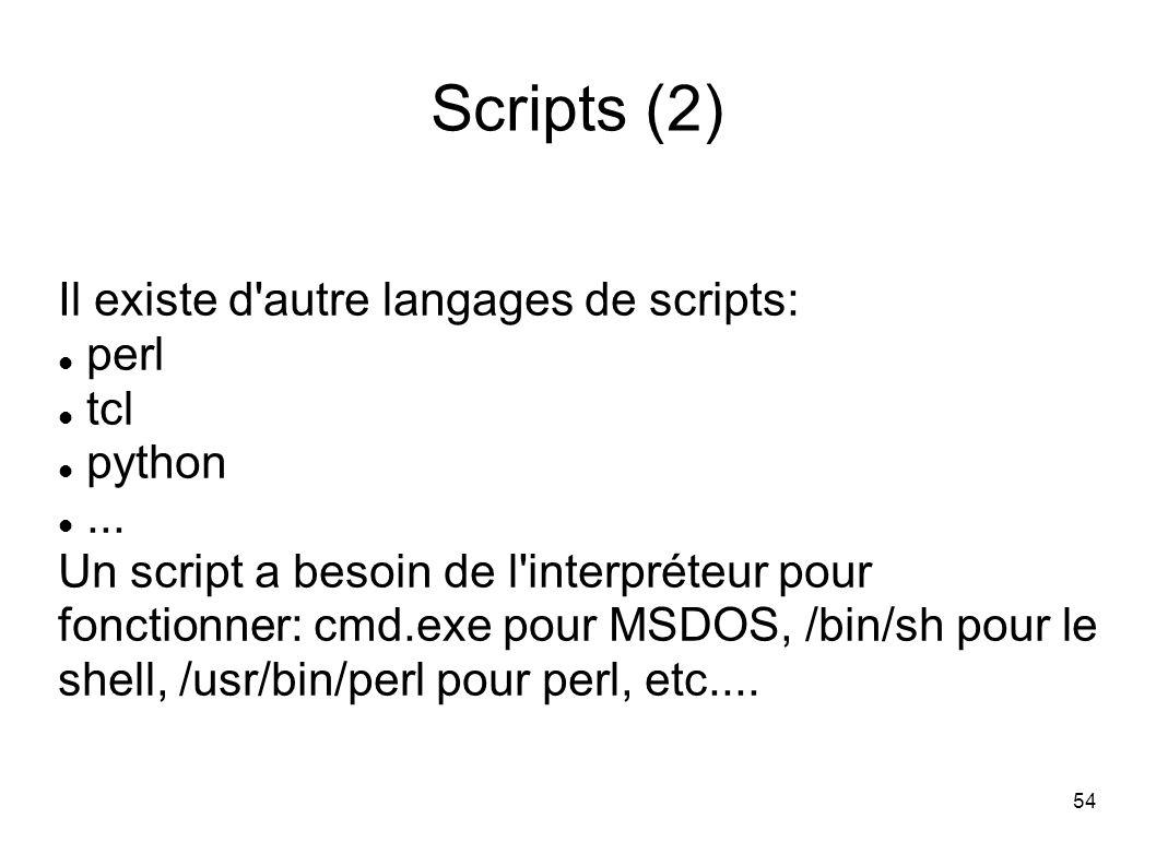 54 Scripts (2) Il existe d autre langages de scripts: perl tcl python...