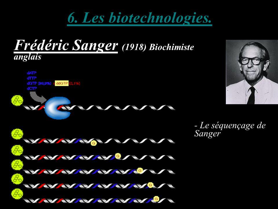 6. Les biotechnologies. Frédéric Sanger (1918) Biochimiste anglais - Le séquençage de Sanger