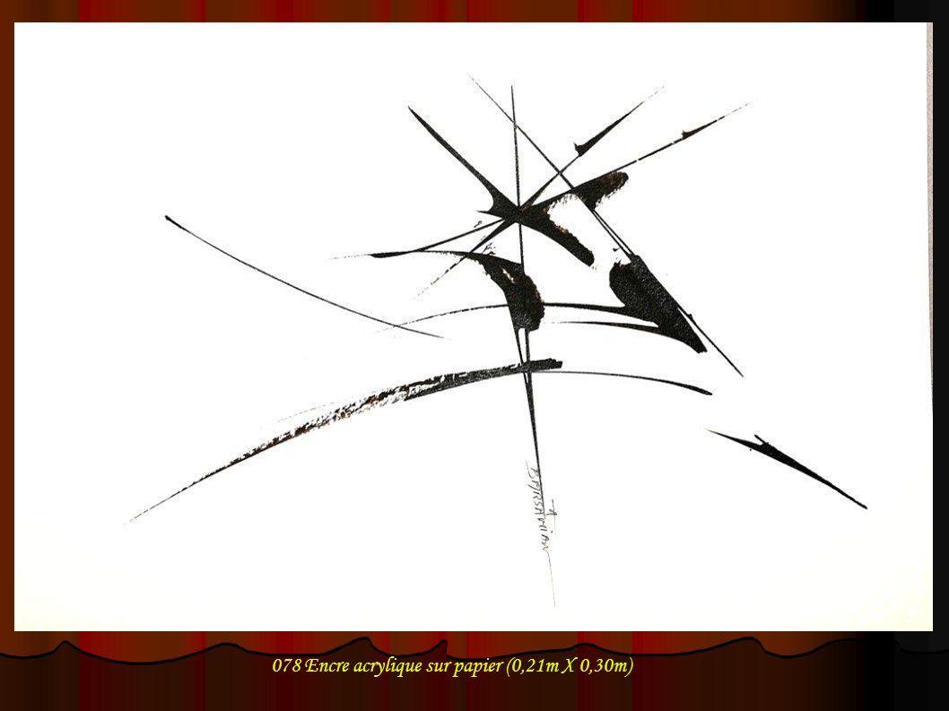 078 Encre acrylique sur papier (0,21m X 0,30m)