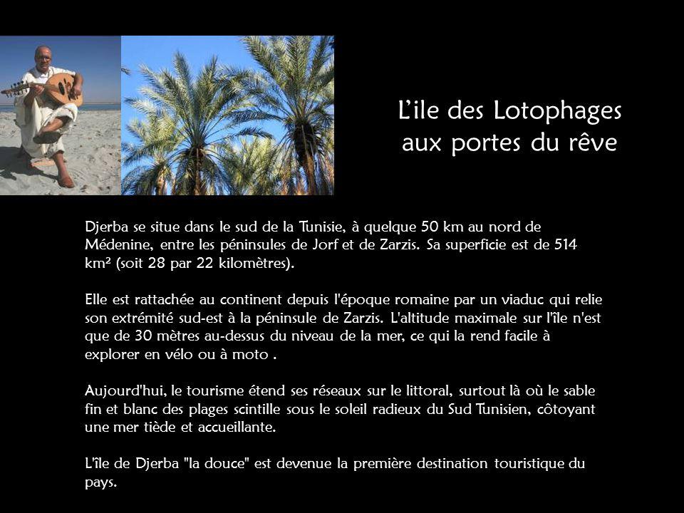 Djerba se situe dans le sud de la Tunisie, à quelque 50 km au nord de Médenine, entre les péninsules de Jorf et de Zarzis.