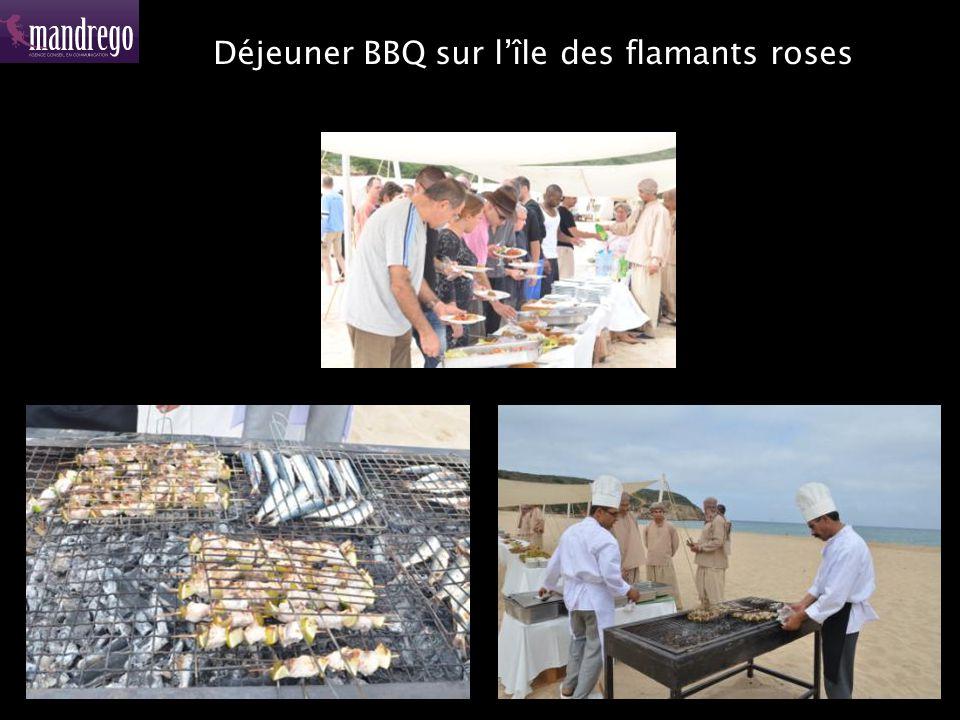 Déjeuner BBQ sur lîle des flamants roses