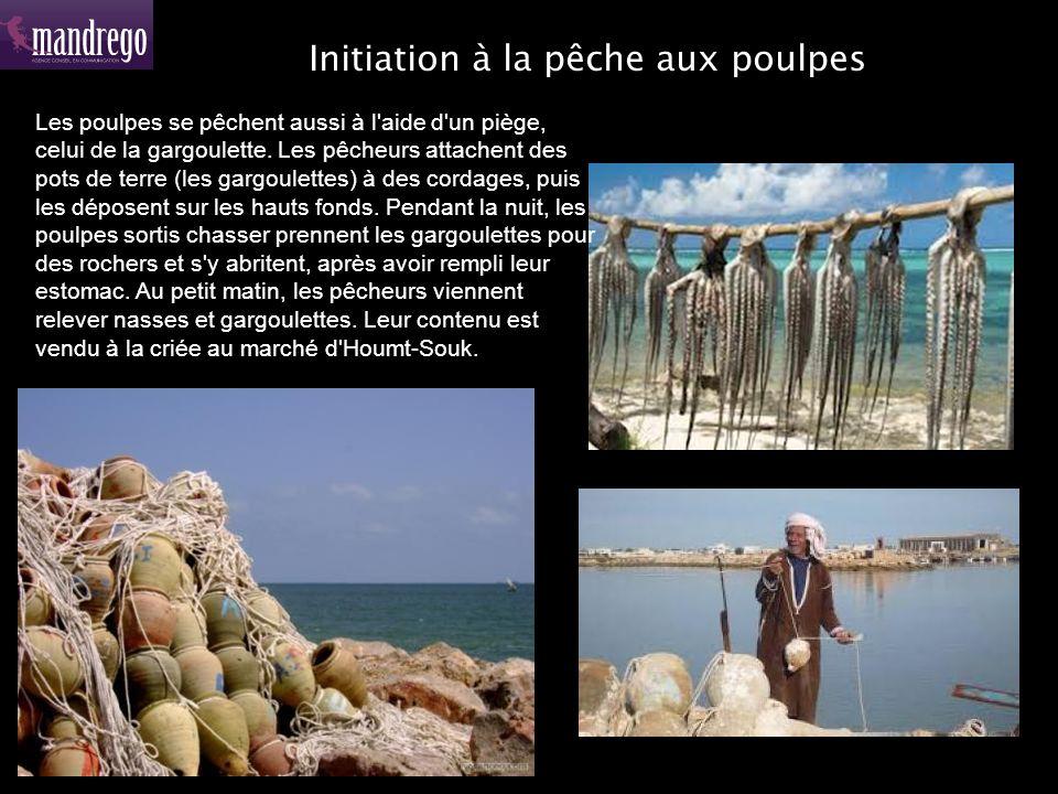 Initiation à la pêche aux poulpes Les poulpes se pêchent aussi à l aide d un piège, celui de la gargoulette.