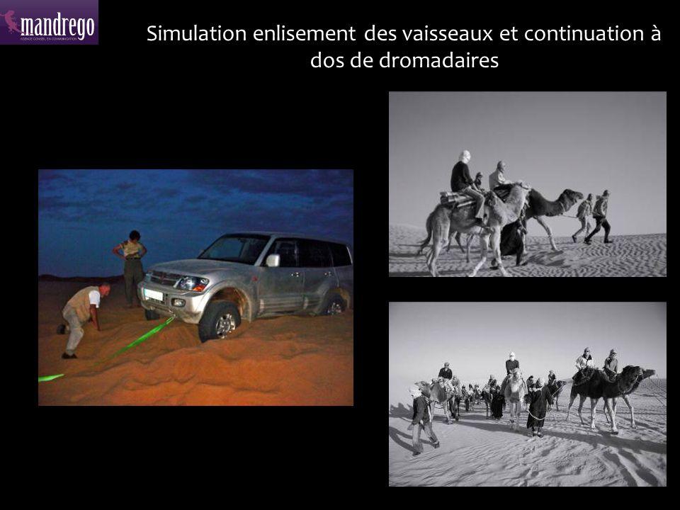 Rallye en buggy et quad sur lîle de Djerba