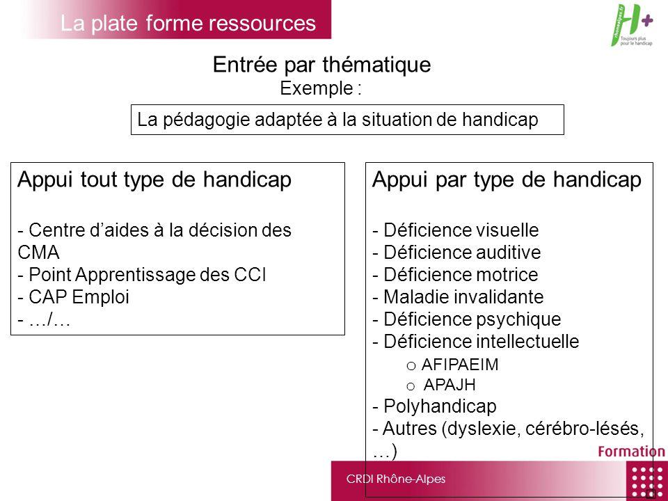 CRDI Rhône-Alpes La pédagogie adaptée à la situation de handicap Entrée par thématique Exemple : Appui tout type de handicap - Centre daides à la déci
