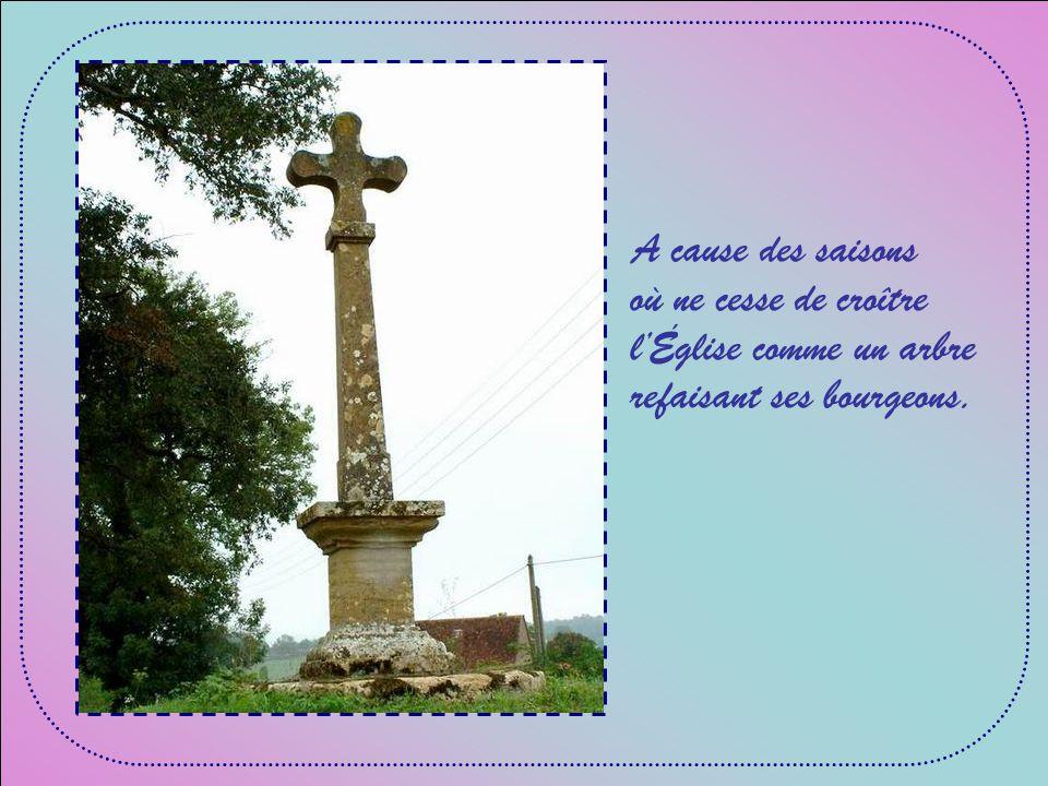 A cause de lEsprit qui nous entraîne au large, pour que dautres rivages découvrent Jésus-Christ ;