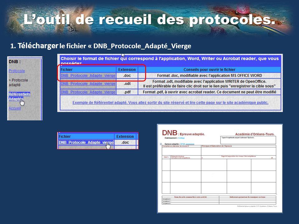 Loutil de recueil des protocoles. 1. Télécharger le fichier « DNB_Protocole_Adapté_Vierge