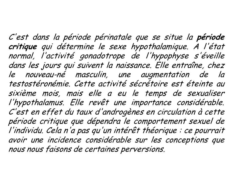 L ETAPE PUBERTAIRE : Un long silence suit la crise néo-natale; l usine hormonale ne se remet en marche qu au moment de la puberté.