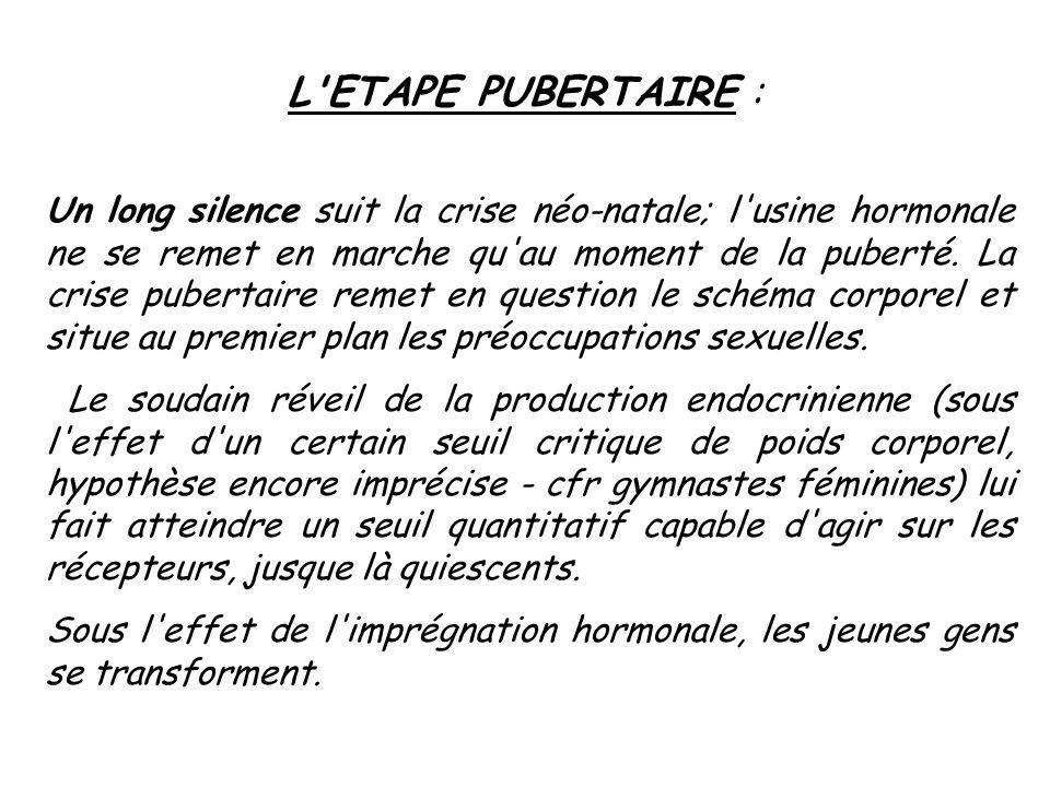L'ETAPE PUBERTAIRE : Un long silence suit la crise néo-natale; l'usine hormonale ne se remet en marche qu'au moment de la puberté. La crise pubertaire
