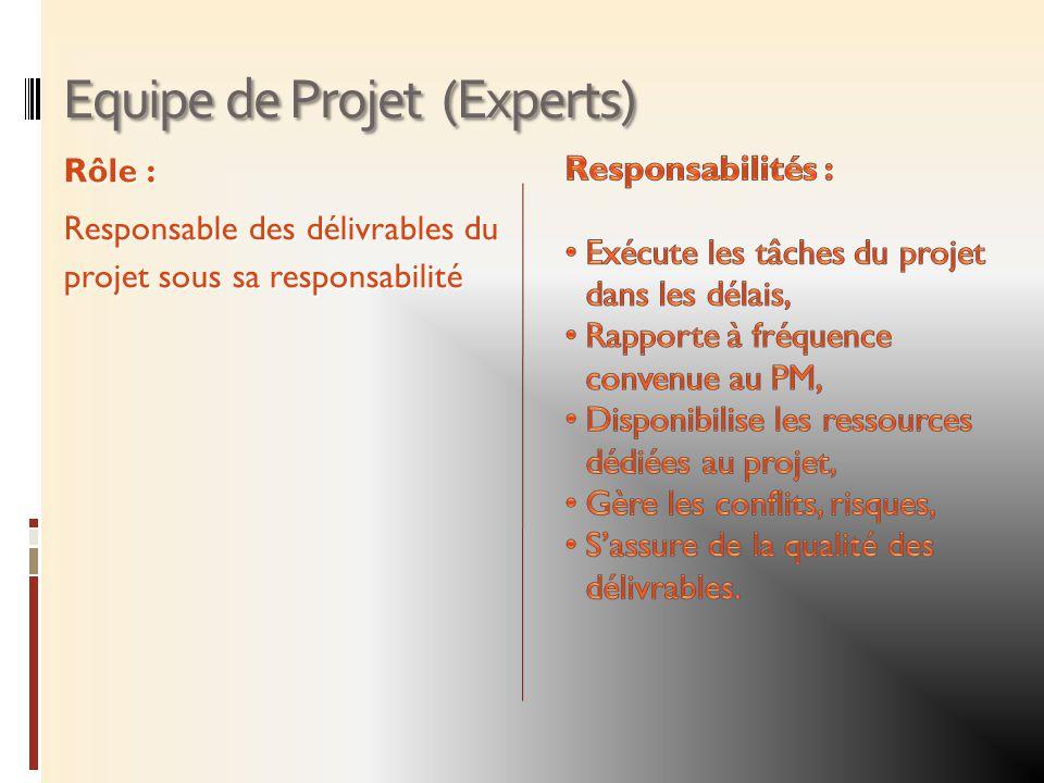 Equipe de Projet (Experts) Rôle : Responsable des délivrables du projet sous sa responsabilité