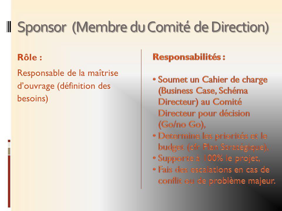 Sponsor (Membre du Comité de Direction) Rôle : Responsable de la maîtrise douvrage (définition des besoins)