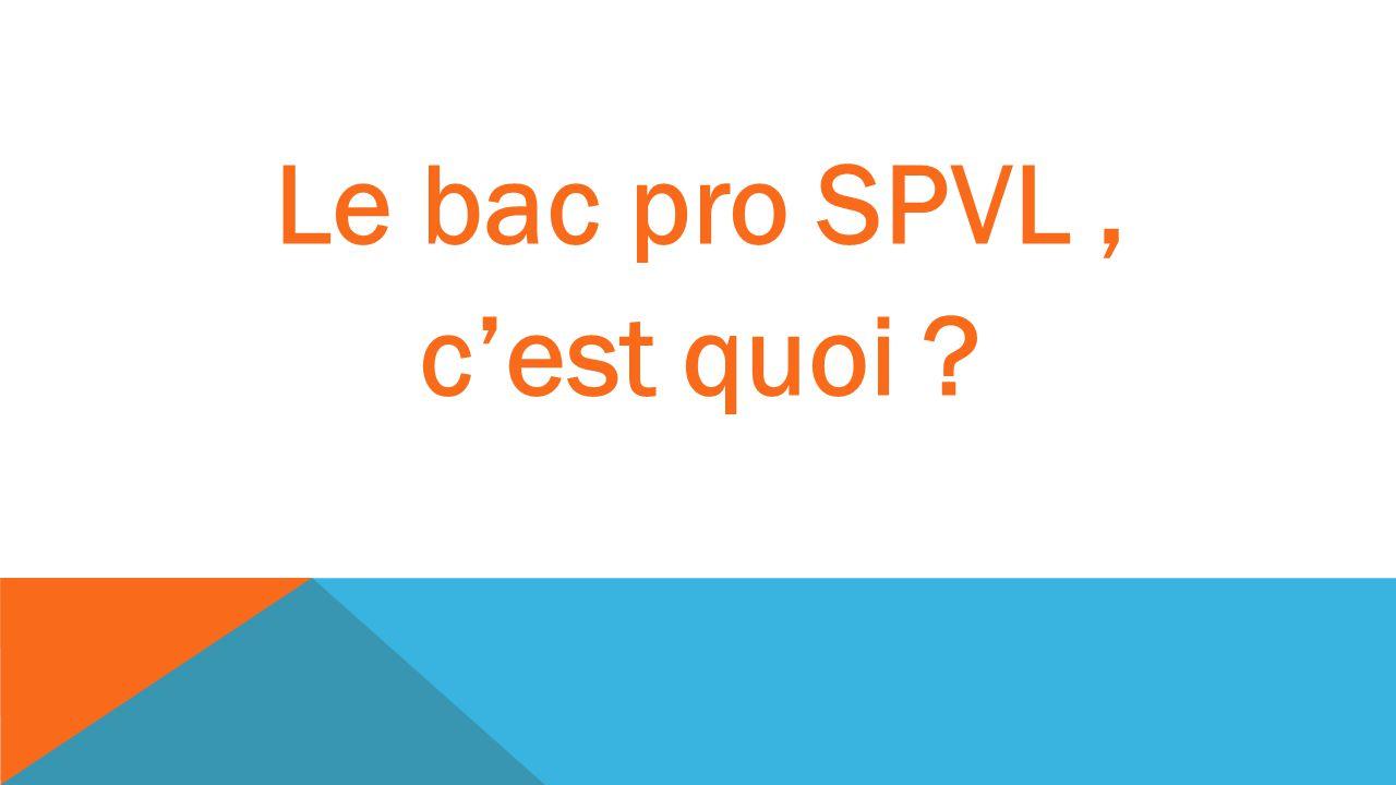 Le bac pro SPVL, cest quoi ?