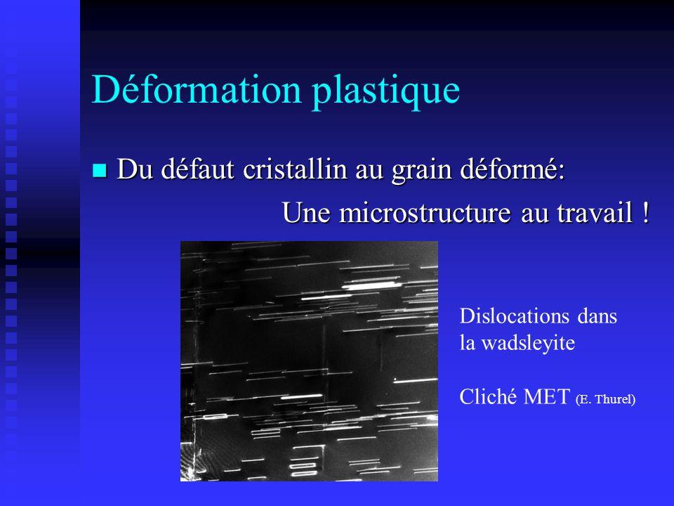 Déformation plastique n Du défaut cristallin au grain déformé: Une microstructure au travail ! Dislocations dans la wadsleyite Cliché MET (E. Thurel)