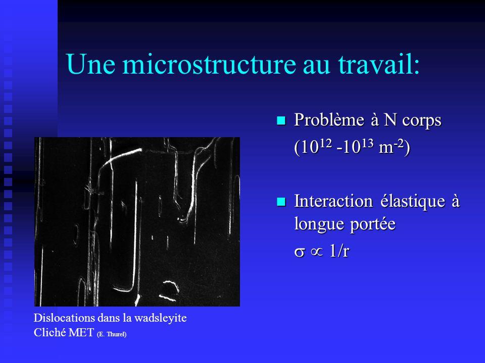 Une microstructure au travail: n Problème à N corps (10 12 -10 13 m -2 ) n Interaction élastique à longue portée 1/r Dislocations dans la wadsleyite C