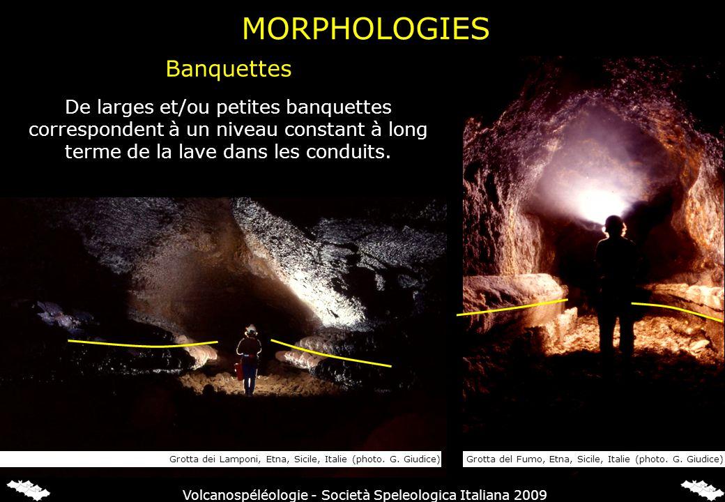 De larges et/ou petites banquettes correspondent à un niveau constant à long terme de la lave dans les conduits. Grotta dei Lamponi, Etna, Sicile, Ita