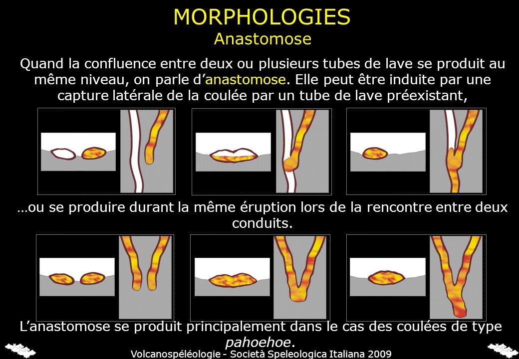 Quand la confluence entre deux ou plusieurs tubes de lave se produit au même niveau, on parle danastomose.