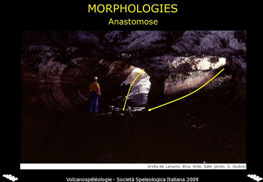 MORPHOLOGIES Anastomose Grotta dei Lamponi, Etna, Sicile, Italie (photo. G. Giudice) Volcanospéléologie - Società Speleologica Italiana 2009