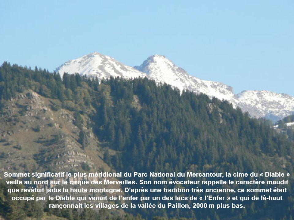 Mont BEGO Le Mont Bego est un sommet situé dans la chaîne des Alpes, dans le massif du Mercantour proche de la vallée de la Roya. Ce sommet est à lint