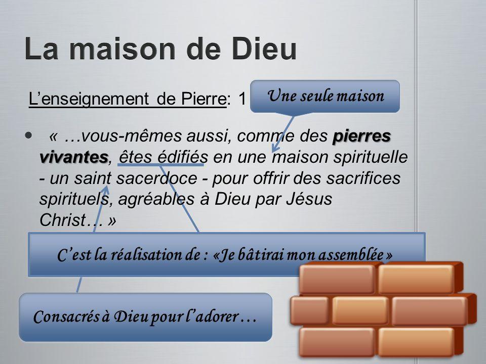 Cest la réalisation de : «Je bâtirai mon assemblée » Lenseignement de Pierre: 1 Pie.2.1-8 Lenseignement de Pierre: 1 Pie.2.1-8 « …vous-mêmes aussi, co