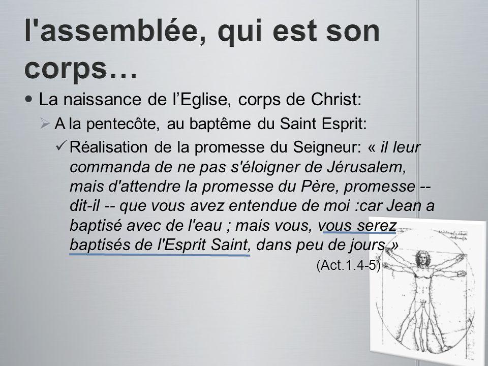 La naissance de lEglise, corps de Christ: La naissance de lEglise, corps de Christ: A la pentecôte, au baptême du Saint Esprit: A la pentecôte, au bap