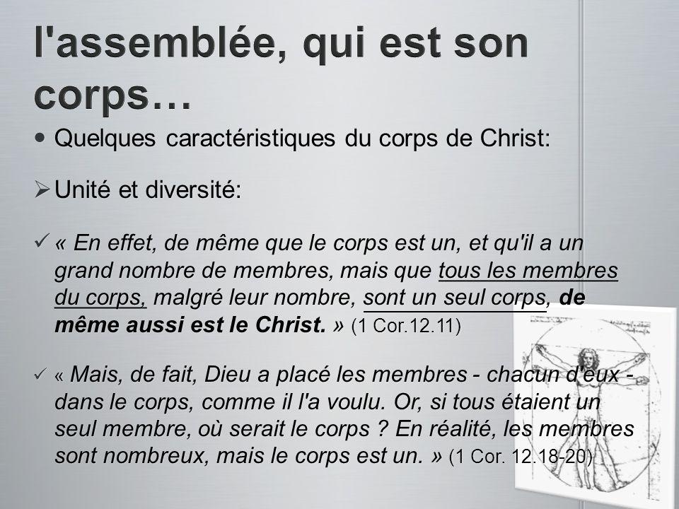 Quelques caractéristiques du corps de Christ: Quelques caractéristiques du corps de Christ: Unité et diversité: Unité et diversité: « En effet, de mêm