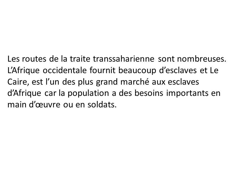 Les routes de la traite transsaharienne sont nombreuses.