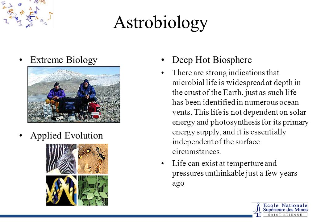 Astrobiology Extreme BiologyDeep Hot Biosphere There are strong indications that microbial life is widespread at depth in the crust of the Earth, just