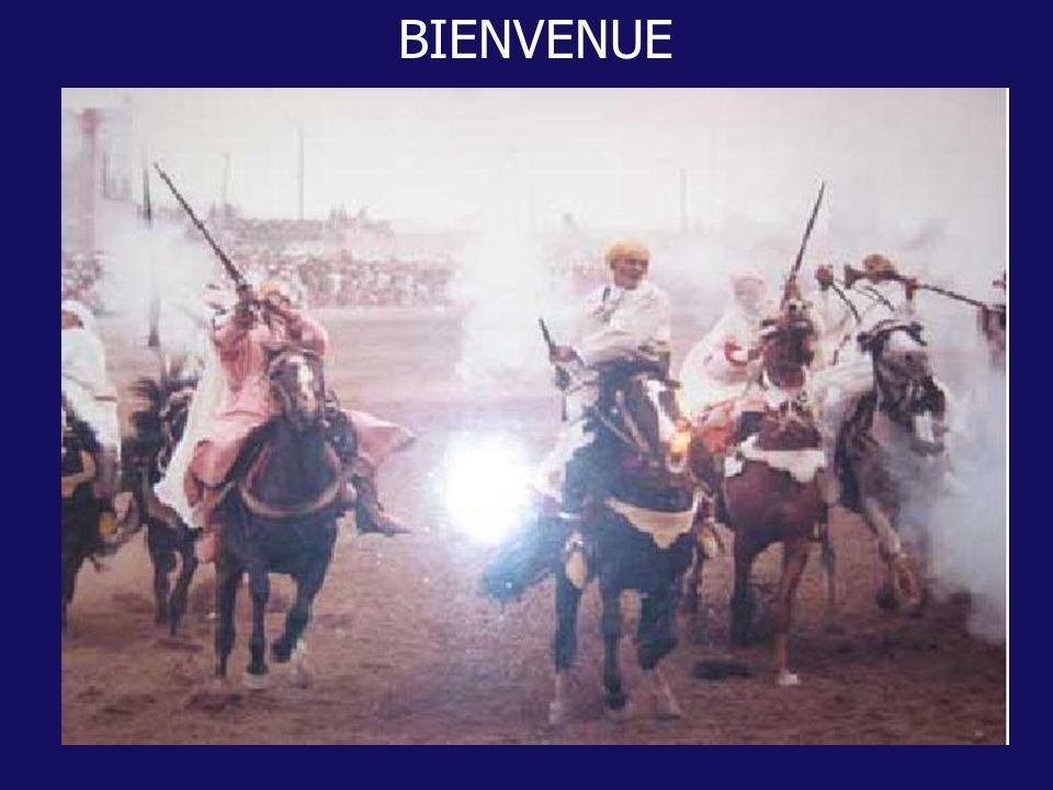 REULTATS DE LA PRISE EN CHARGE DU NEPHROBLASTOME SELON LE PROTOCOLE SIOP 93-01 A propos de 90 cas colligés à lHôpital dEnfants de Rabat Rabat, le 27/ 06 / 2002