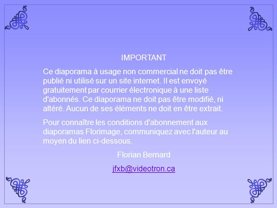 Mourir d'amour - Orchestre de Frank Purcell Création Florian Bernard Tous droits réservés – 2005 jfxb@videotron.ca