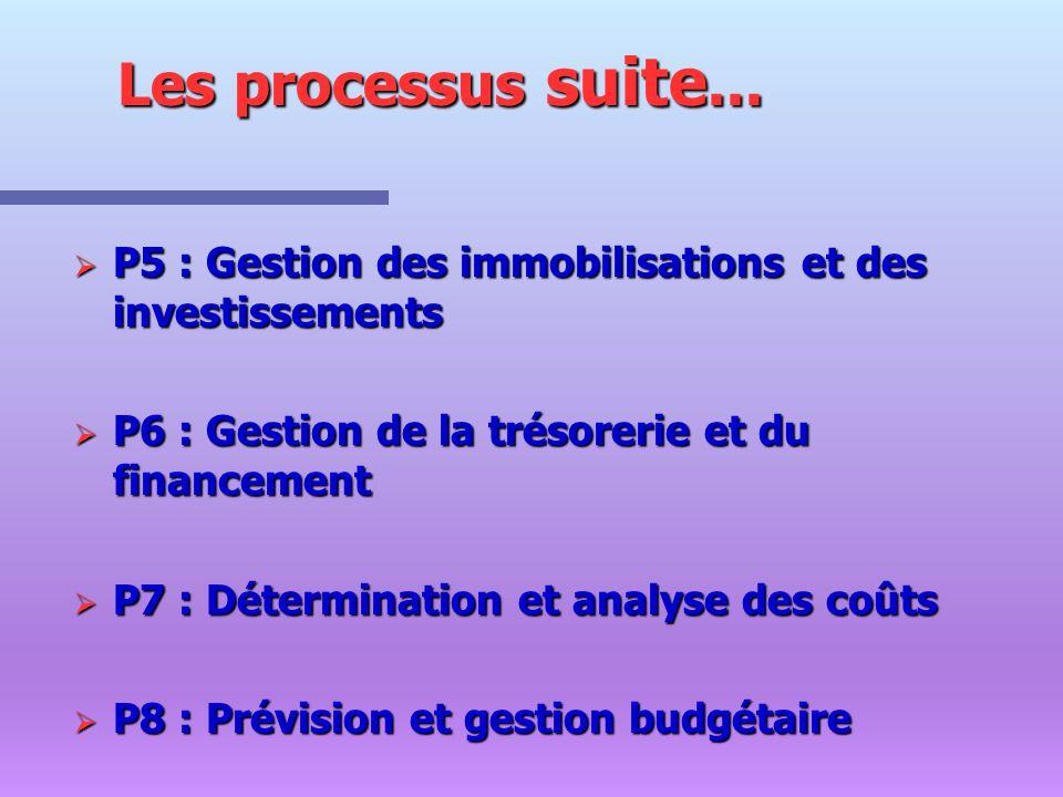 P 9 : Mesure et analyse de la performance P 9 : Mesure et analyse de la performance P 10 : Organisation du système d information comptable et de gestion.