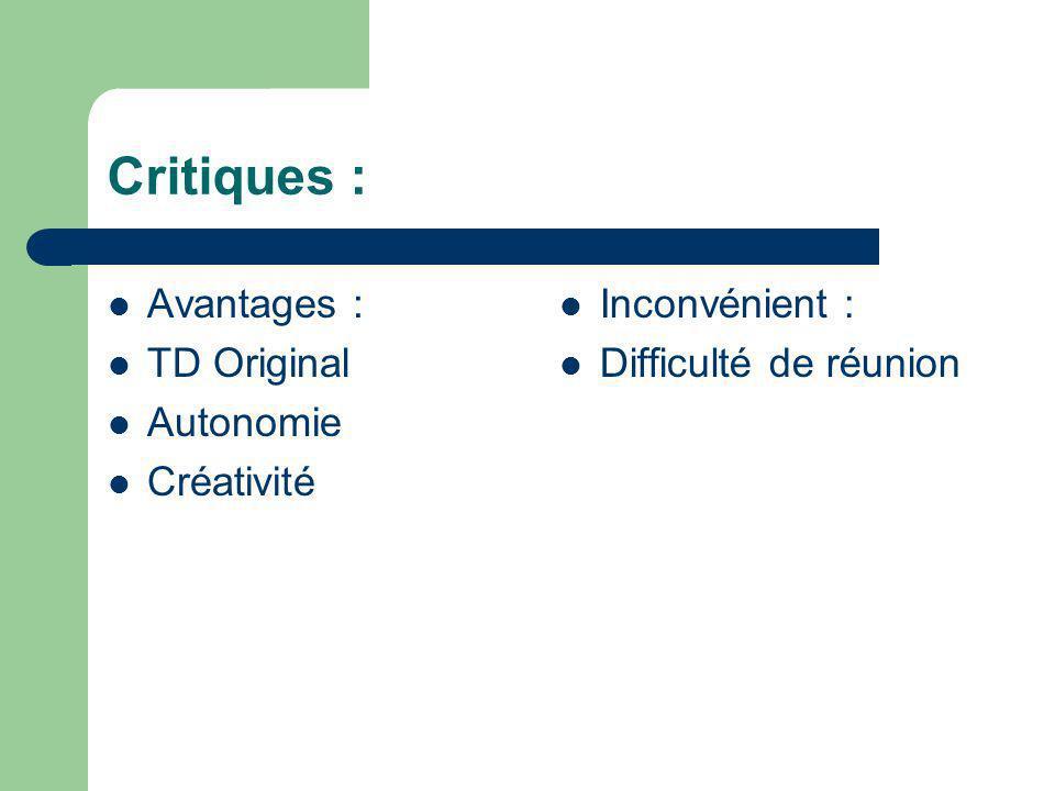 Critiques : Avantages : TD Original Autonomie Créativité Inconvénient : Difficulté de réunion