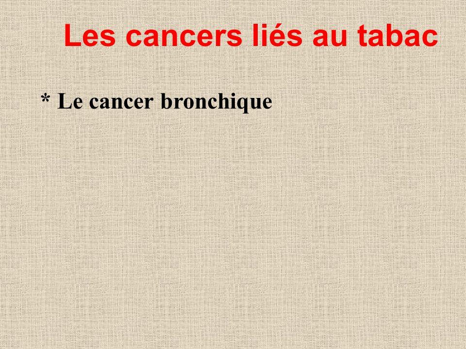 Les cancers liés au tabac * Le cancer bronchique