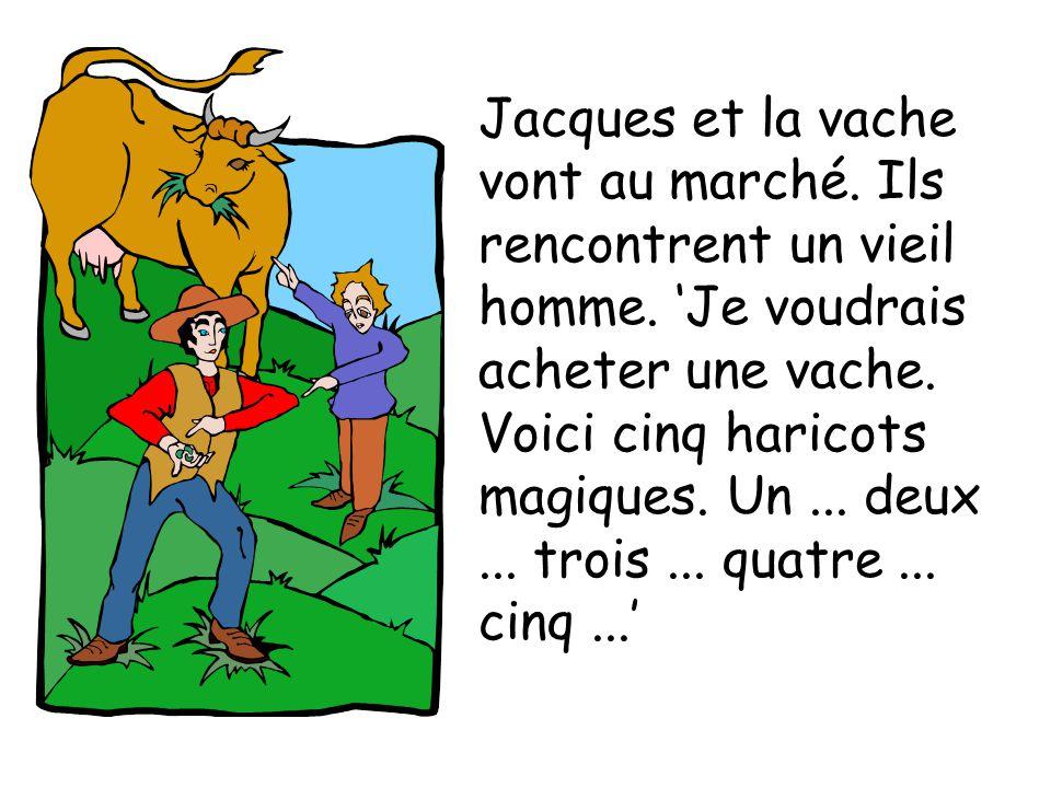 Jacques et la vache vont au marché. Ils rencontrent un vieil homme. Je voudrais acheter une vache. Voici cinq haricots magiques. Un... deux... trois..